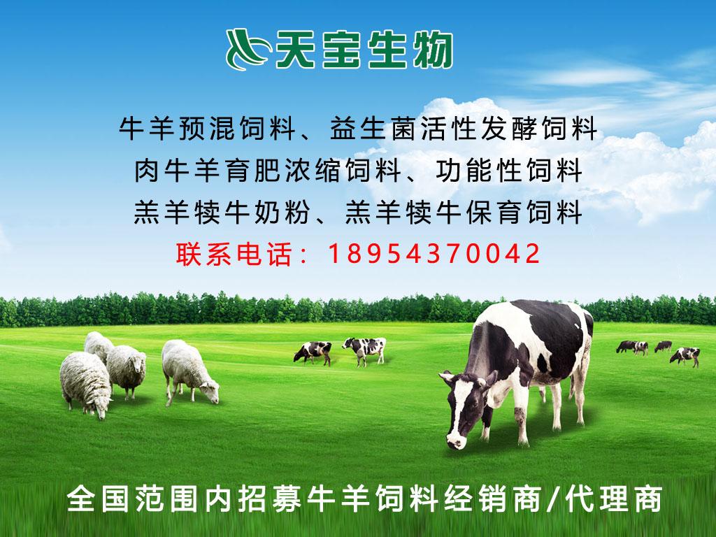 牛羊育肥饲料十大品牌,牛羊育肥就选天宝饲料